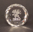 Crystal Paper Weight With Etched Griffin